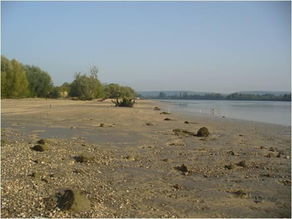 Photo - zone intertidale