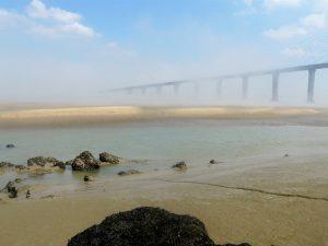 Photo - Pont de Normandie (C. Degrémont - GIP Seine-Aval)