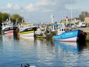 Photo - Port de Honfleur (C. Fisson, GIP Seine-Aval)